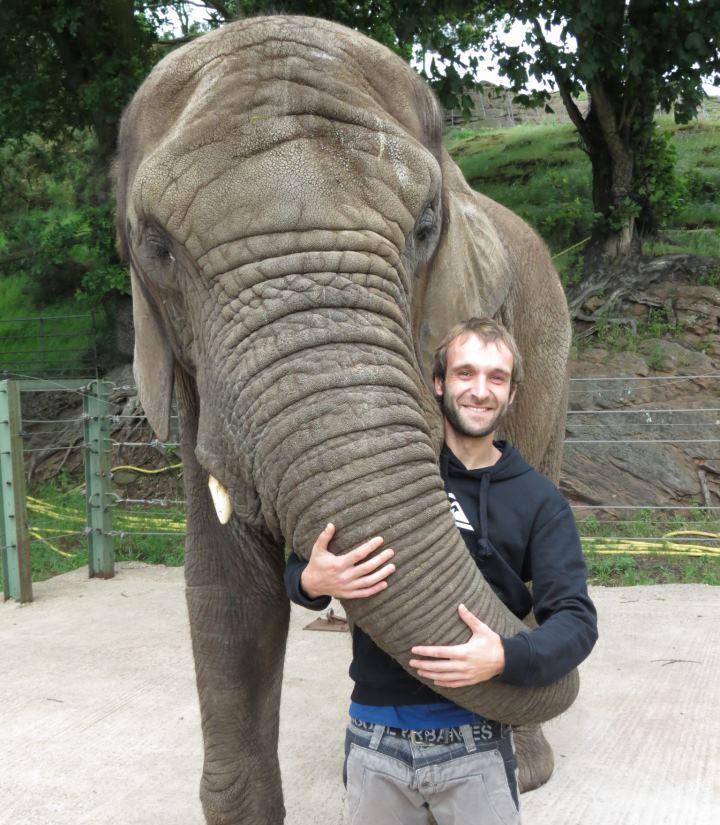 nelo civera con un elefante en el west midlands safari